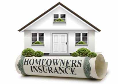 Does Homeowners Insurance Cover Termite Damage Proactive Pest Control