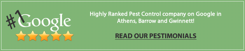 Lawrenceville Pest Contorl Ranking