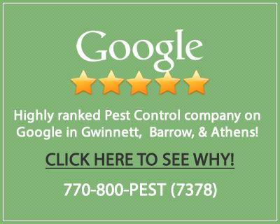 Lawrenceville Pest Control