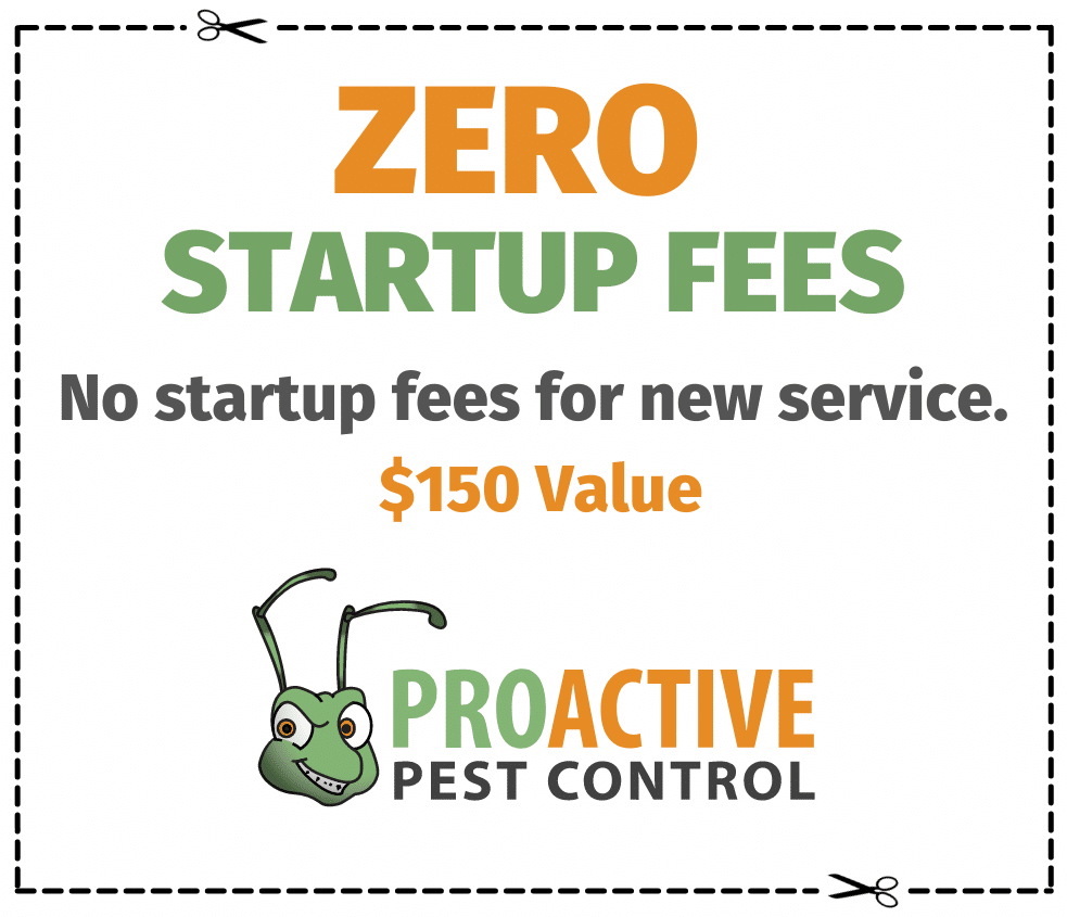 No Startup fees new service $150 Value